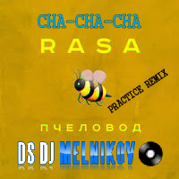 RASA - Пчеловод DSDJ Melnikov Cha-Cha-Cha Practice Remix edit
